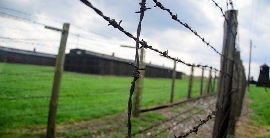 הזכאות לפיצויים מגרמניה לדור שני לשואה